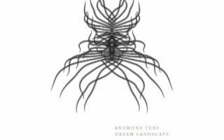 Anemone Tube - Dream Landscape